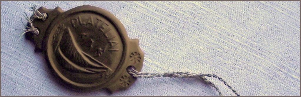 Medalis | meistriukodirbtuvele.lt